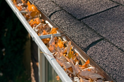 Clear leaves from gutters